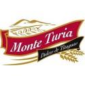 Monte turia