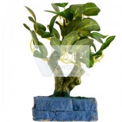 Vaso c/ bonsai plástico 15cm